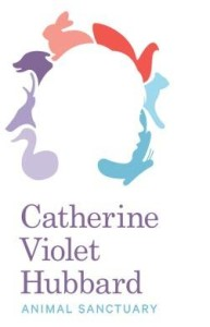 "Signed Books Available at the ""Authors for Catherine's Dream"" Auction"