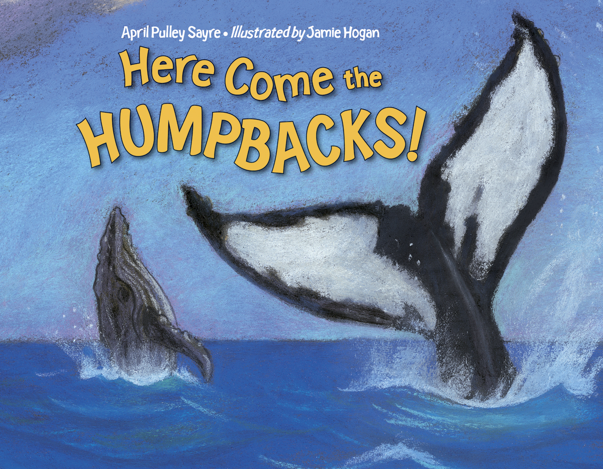 Here Come the Humpbacks! | Children\'s Book Council