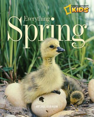 Everything Spring
