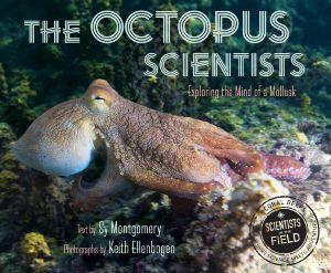 Octopus Scientist