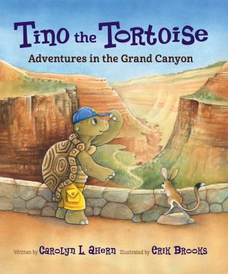 Tino the Tortoise