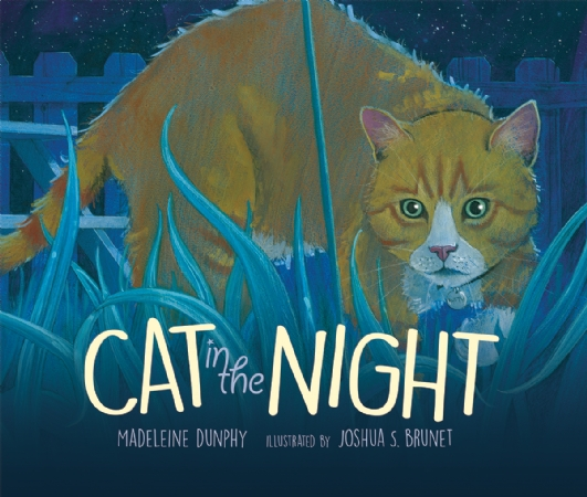 Cat in the Night