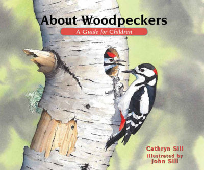 About Woodpeckers: A Guide for Children
