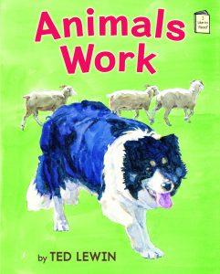 Animals Work