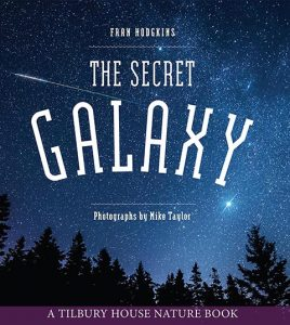 The Secret Galaxy