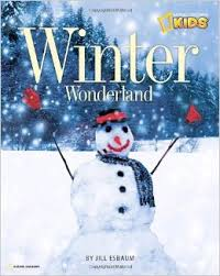 Wonderland of Winter (Winter 2014)