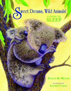 Sweet Dreams, Wild Animals!: A Story of Sleep