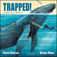 Trapped: A Whale's Rescue