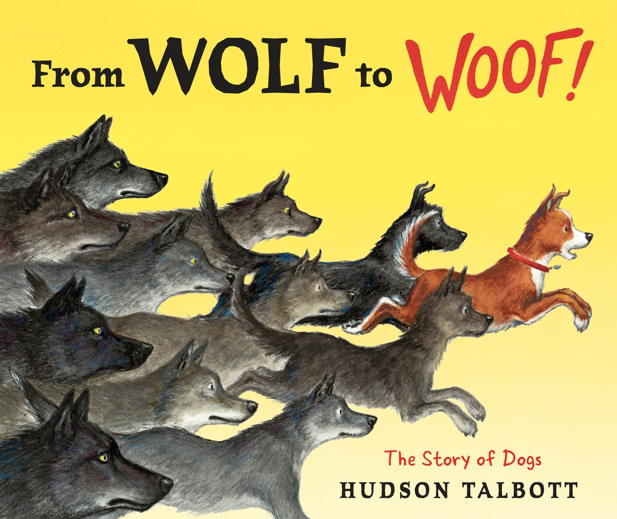 From Wolf to Woof!: The Story of Dogs