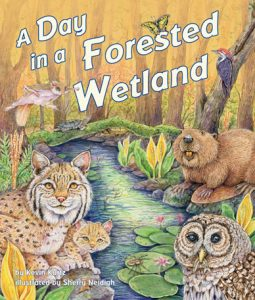 A Day in the Forested Wetland