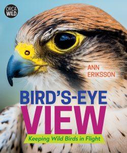 Bird's-Eye View: Keeping Wild Birds in Flight